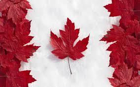 Регистрация в Канаде компании с нулевым налогом