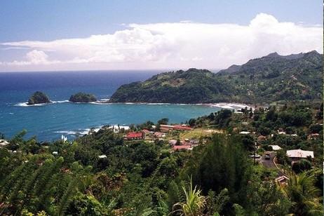Гражданство райского острова Доминика