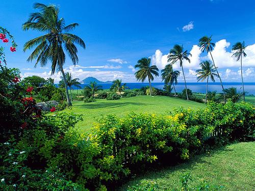 Остров Невис: траст и мультиформенный фонд